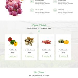nature WordPress theme